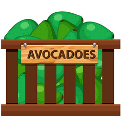 A crate of avocadoes vector