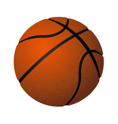 basketball spherical inflated leather ball vector image
