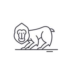 chimpanzee line icon concept chimpanzee vector image