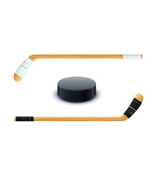 couple sticks and puck vector image