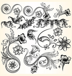 decorative swirls set for design vector image