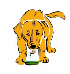 dog drinking vector image