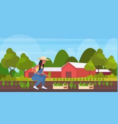 Female farmer planting agriculture seedlings vector