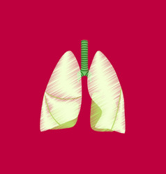 Flat shading style icon lungs and trachea vector