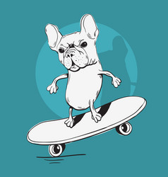french bulldog make a balance with a skateboard vector image