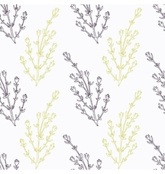 Hand drawn thyme branch stylized black and green vector image vector image