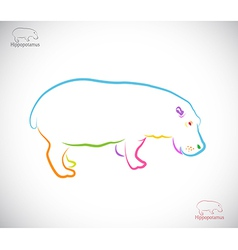 Hippopotamus vector