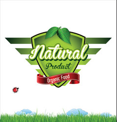 label for organic product vector image