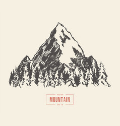 Mountain peak pine forest hand drawn sketch vector