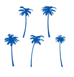 palm trees isolated on white background vector image