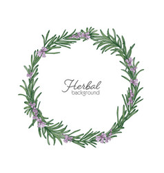 round natural backdrop or wreath made of rosemary vector image