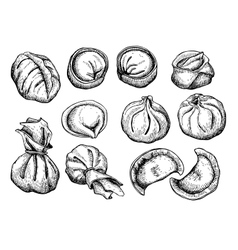 set of dumplings Vintage sketch vector image