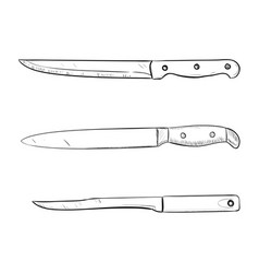 sketch of kitchen knives vector image