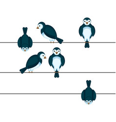 birds sitting on wire in different positions vector image