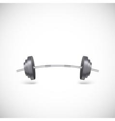 Metal barbell vector image