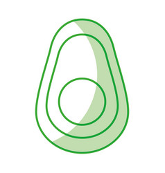 Avocado half fresh vegetable isolated icon vector