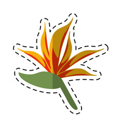 cartoon bird of paradise flower vector image