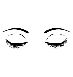 closed eyes with black eyelashes on a white vector image