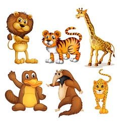 Different kinds of land animals vector