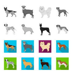dog breeds monochromeflat icons in set collection vector image