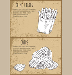 french fries fastfood posters vector image