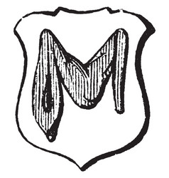 Manche is an ancient sleeve with long hangings to vector