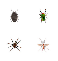 Realistic gnat arachnid dor and other vector