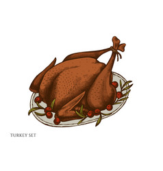 set hand drawn colored turkey vector image