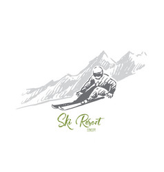 ski snow winter sport extreme concept vector image