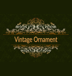 vintage floral ornament vector image