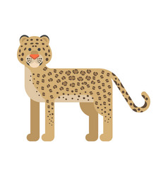 flat style of leopard vector image vector image