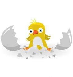 Birth chicken vector
