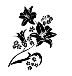 Black silhouette Lily vector