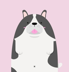 cute big fat French Bulldog vector image
