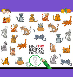 Find two identical cat pictures game for kids vector