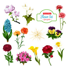 Flower spring blooming plant and tree icon vector