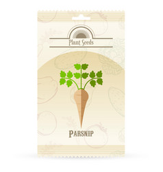 Pack of parsnip seeds icon vector