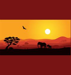 Safari africa sunset with wild animal silhouette vector