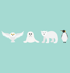 white bear owl king penguin emperor aptenodytes vector image