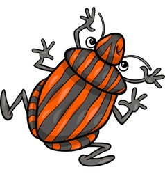 Shield bug insect cartoon character vector