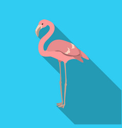 Flamingo icon in flate style isolated on white vector