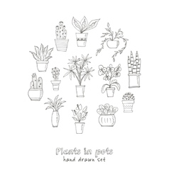 set plants in a pot hand drawn doodle sketch vector image