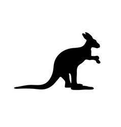 Silhouette a australian kangaroo on white vector