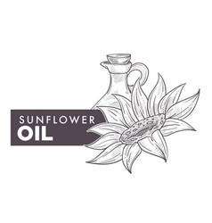 sunflower oil poured in glass bottle text and vector image
