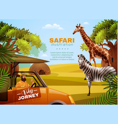 safari colored poster vector image