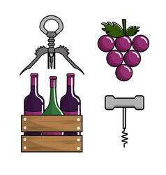 bottles of wine grape and take out cork vector image vector image