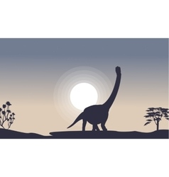 Silhouette of argentinosaurus with moon vector image vector image