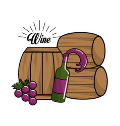 Bottle of wine barrel and grape icon vector