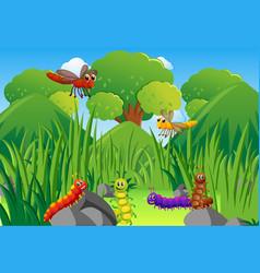 caterpillars and dragonflies in garden vector image