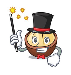 Magician macadamia mascot cartoon style vector